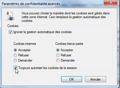 activer cookies internet explorer 3